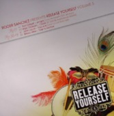 Roger Sanchez Presents Release Yourself Vol. 5 (sampler 2)