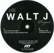 The Walt J Project (fit Sound)
