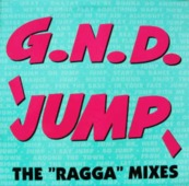 Jump (the 'ragga' Mixes)