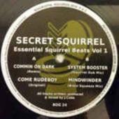 Essential Squirrel Beats Vol? ?1
