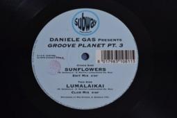 Sunflowers / Lumalaikai