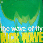 The Wave Of Fly